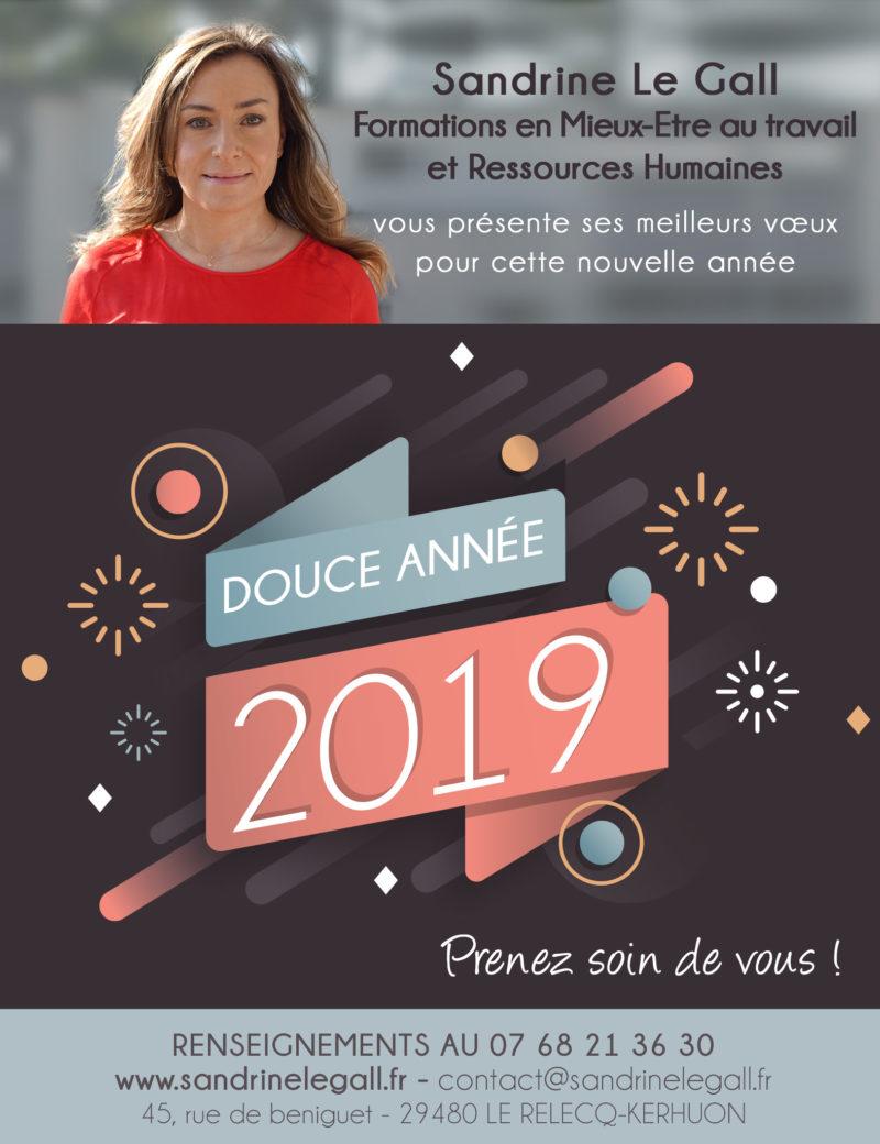 Voeux-2019-formations-ressources-humaines-mieux-etre-au-travail-sandrine-le-gall-brest-le-relecq-kerhuon-stress-burn-out.j